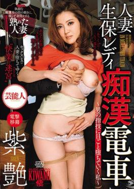 DVAJ-254 studio Alice Japan - Married Wife Life Insurance Lady Molestation Train ~ I Will Fall To Th