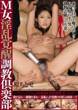 AVSA-017 studio Avs - M Woman Nasty Awakening Torture Club-profile No.002 Physical Arousal Torture W