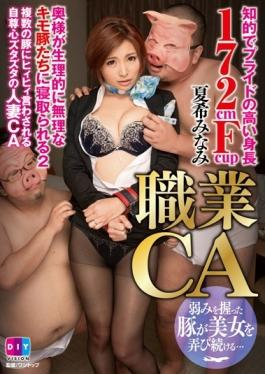 DIY-063 - Occupation CA Intellectual High Pride In Stature 172cmFcup Wife Is Netora To Excessive Liver Pig Who Physiologically 2 Natsuki Minami - DIY