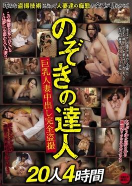 BDSR-248 - Full Voyeur 20 People Four Hours Out Of Sight Of The Master Busty Wife - BIGMORKAL