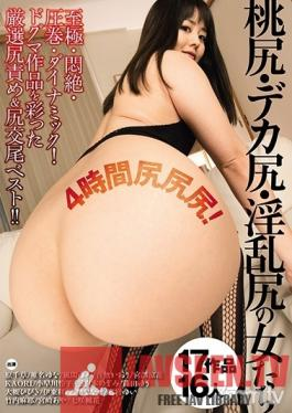 DDT-614 Studio Dogma - Girls With Peach Asses, Huge Asses, Slutty Asses